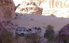 3256263-Camels_and_Jeeps_Wadi_Rum